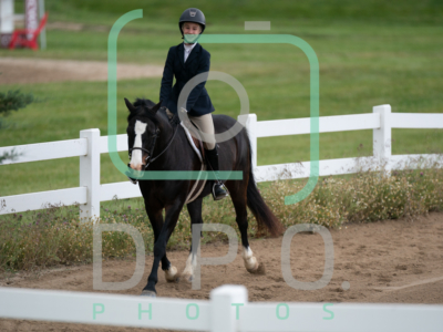 6-13-20 Hill Top Horse Show Hunter Ring 2