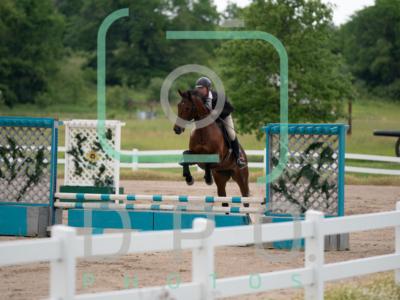 6-13-20 Hill Top Horse Show Jumper Ring